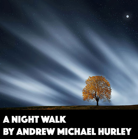 A Night Walk by Andrew Michael Hurley