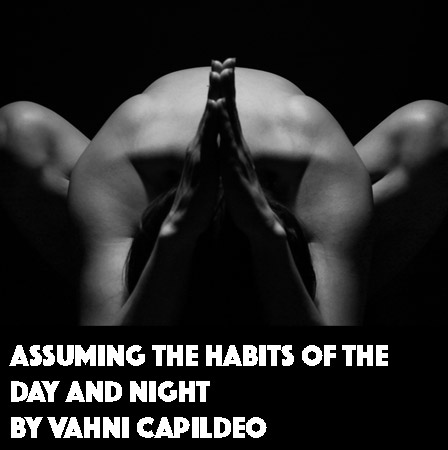 Assuming the Habits of the Day and Night by Vahni Capildeo