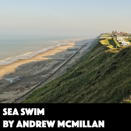 Sea Swim by Andrew McMillan