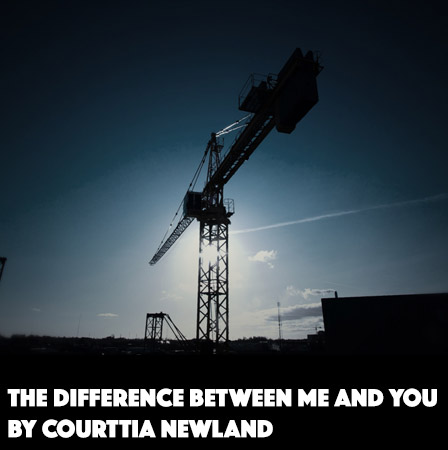 The Difference Between Me and You by Courttia Newland